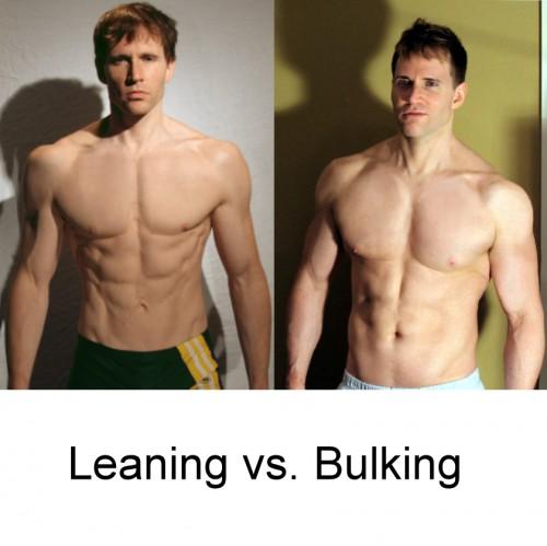 Leaning Phase vs. Bulking Phase