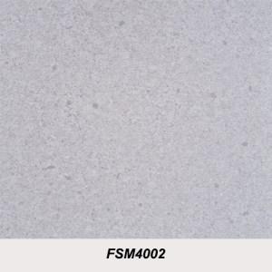 FSM4002