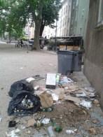 les ordures éventrées par les chiens, mais aussi ...