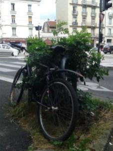 la planète en plein sauvetage à Grenoble, ici avenue Félix Viallet