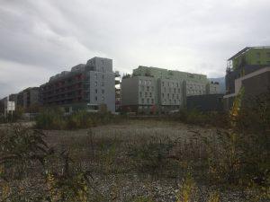 Tout à côté à Vigny Musset les opérateurs refusent d'achever l'opération. Un T5 acquis 220 000 € est déjà tombé à 150 000. La municipalité devrait créer un parc pour stopper la chute et augmenter la part des propriétaires.