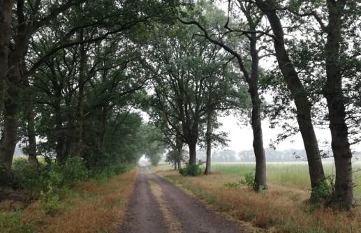 De Beltweg bij Wielen