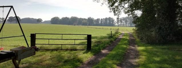 Het pad naar de Zuidergrensweg