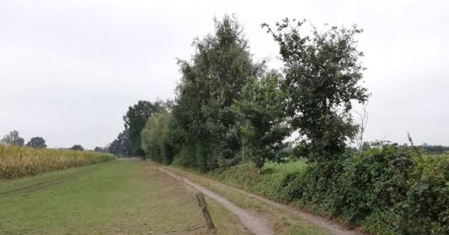 Het grenspad achter de Driehonderdmeterweg