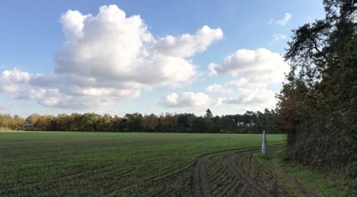 Grenspaal in natuurgebied dichtbij Hooge Mierde