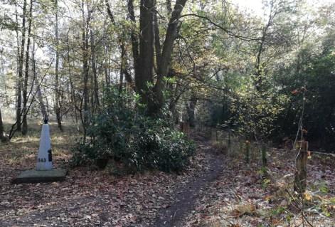 In het bos in de Kalmthoutse Heide, met grenspaal