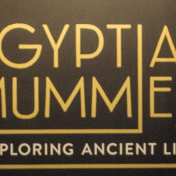 Egyptian Mummies at Sydney's Powerhouse Museum #PowerhouseMuseum #EgyptianMummies