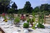 The Rose Garden Tea Party