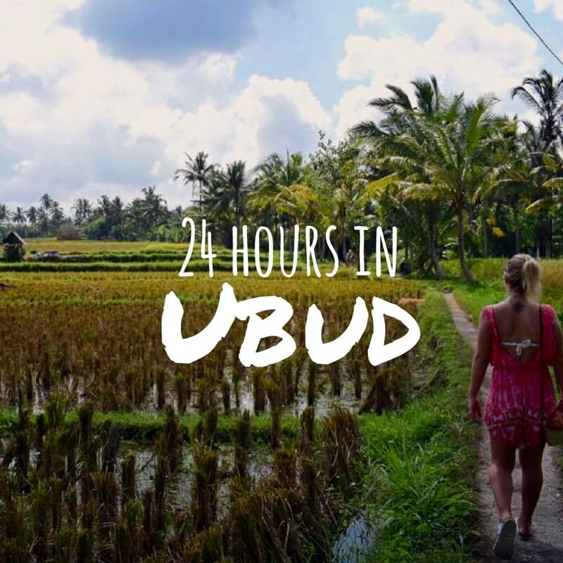 Ubud In 24 Hours: Exploring The Rice Fields & Monkey Forest