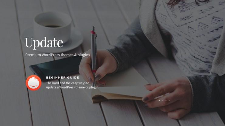 Update premium WordPress themes and plugins