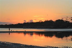 A person takes the dogs out on the tidal flats as the eastern sky brightens