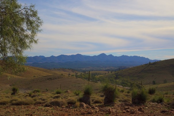 The walls of Wilpena Pound