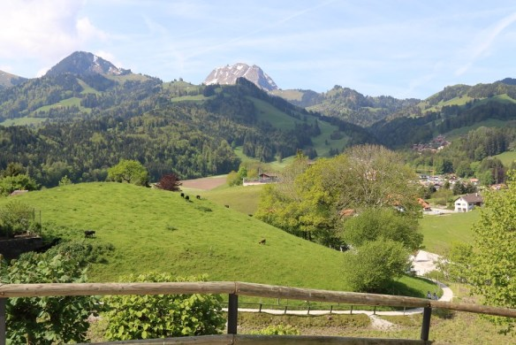The view from the ramparts - cows and mountain and spectacular green