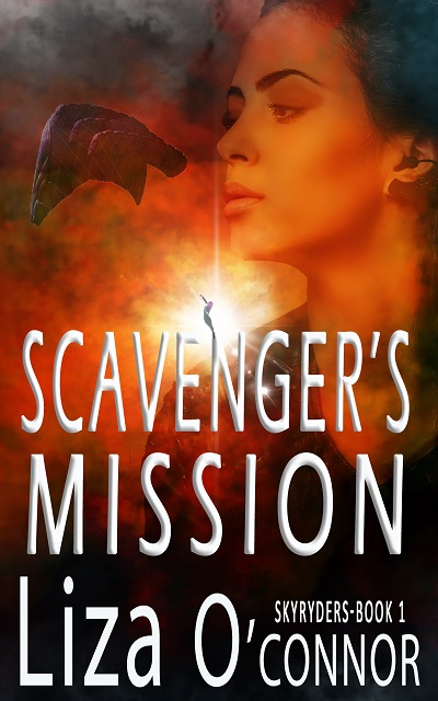 Savenger's mission 400X640