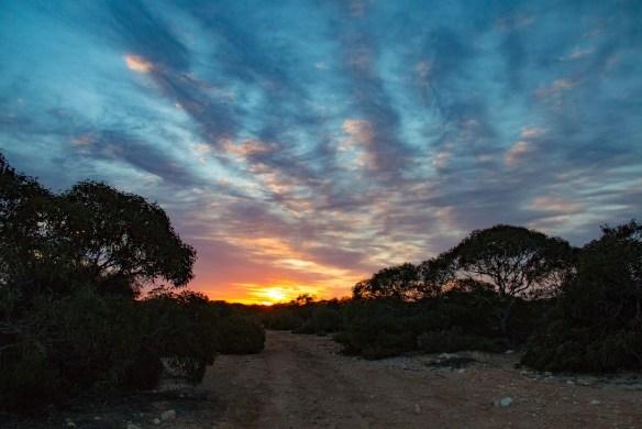 Sunrise in the desert at Border Village, SA