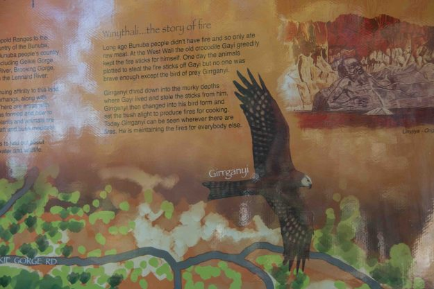 The story of the black kite. And you do see this bird wherever there's a fire