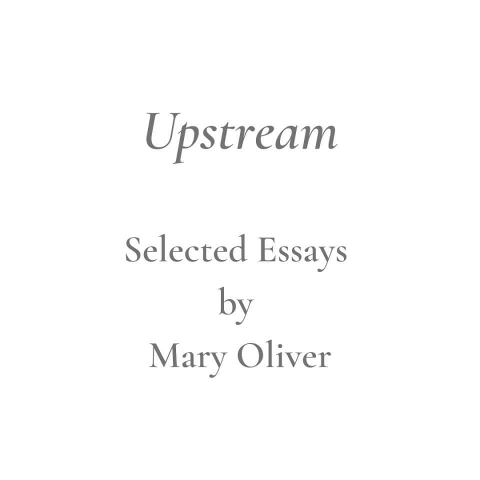 Upstream Title