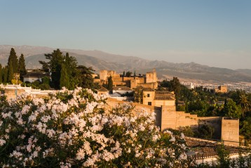 Alhambra from Albaicin