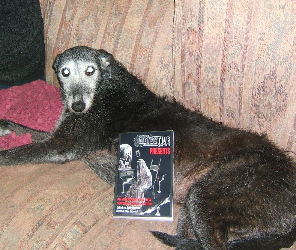 Alas, Alack, Alarums And All New Stories - greydogtales