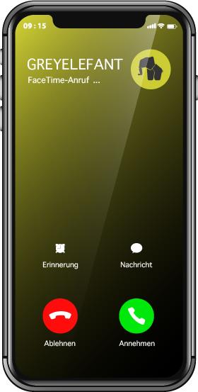 FaceTime-Anruf Branding Workshop