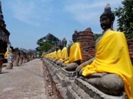 Row of Buddha - Wat Yai Chai Mongkhon