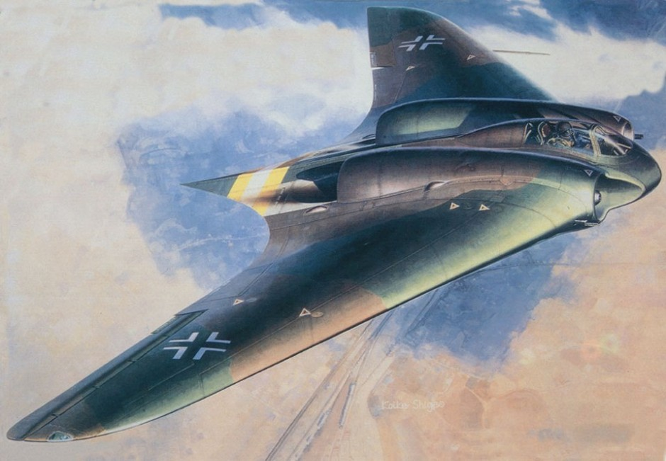 Image result for nazi horten