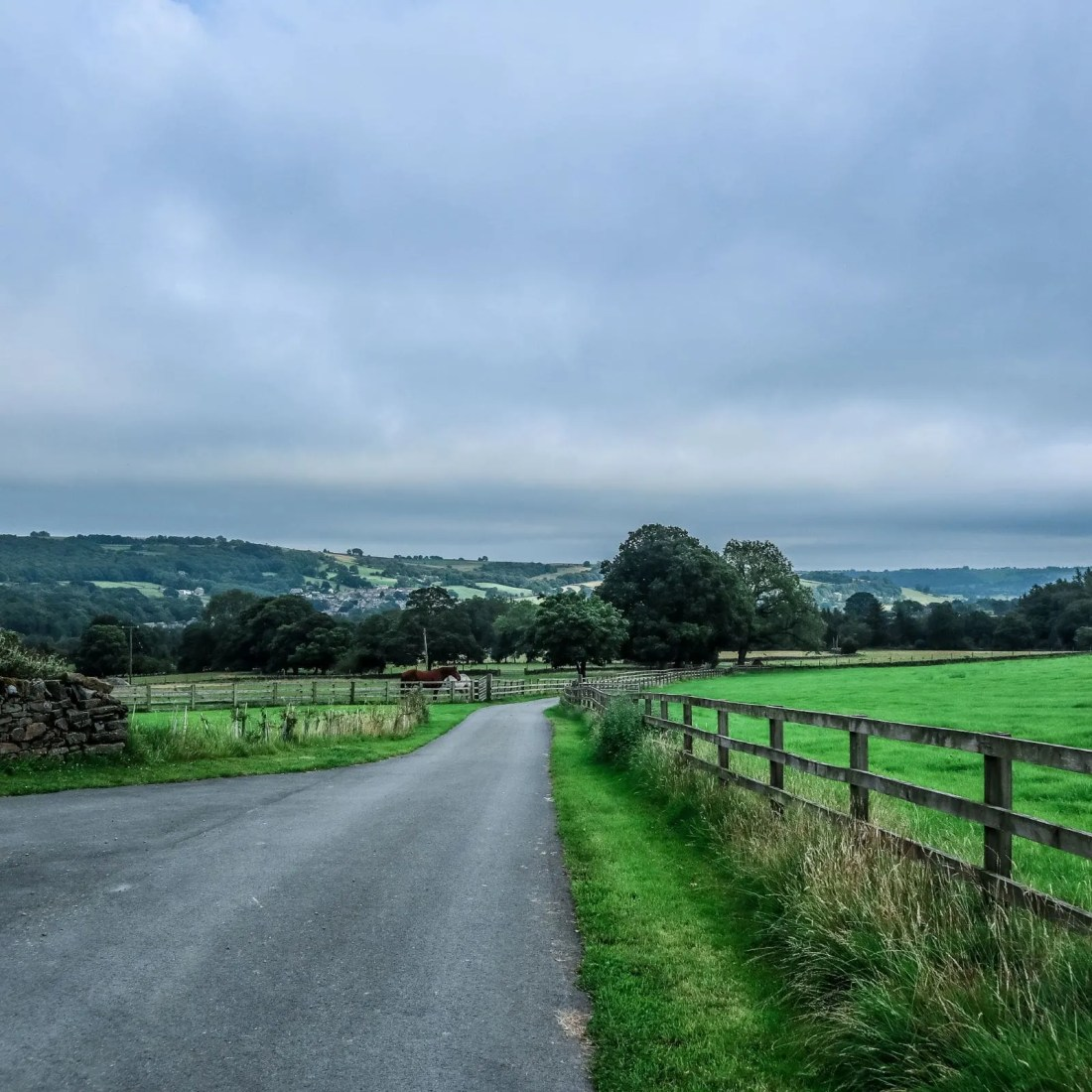 View of Nidderdale after leaving the Whittaker's gin distillery tour