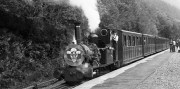 The steam age (and my part in its revival)