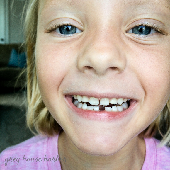 first visit from the tooth fairy | greyhouseharbor.com