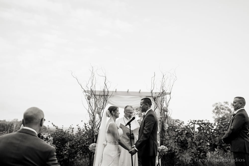 priam vineyards wedding ceremony photos bride groom exchanging vows