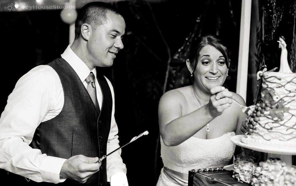 priam vineyards wedding reception bride groom cutting cake photos