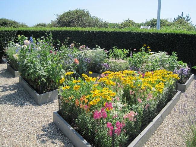 Image Result For Grey Gardens