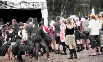 rGeneral Bluesfest2015 GreyRose Ge15