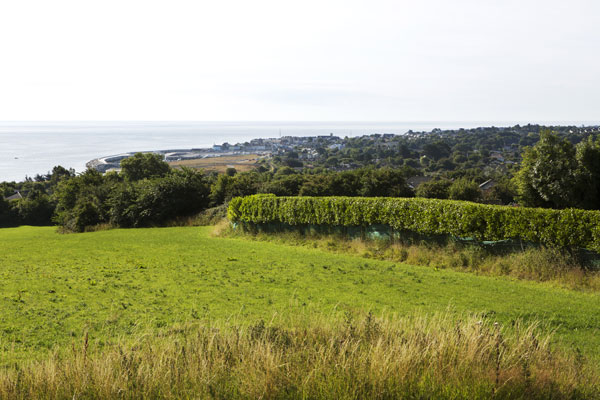 View-to-the-see-to-Greystones.jpg