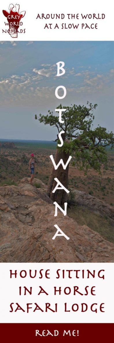 botswana-house-sitting
