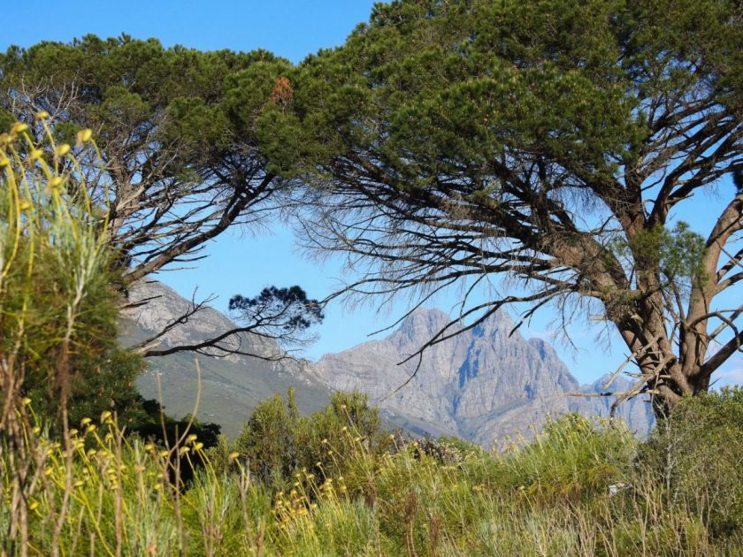 Jan Marais Nature Reserve, Stellenbosch, South Africa