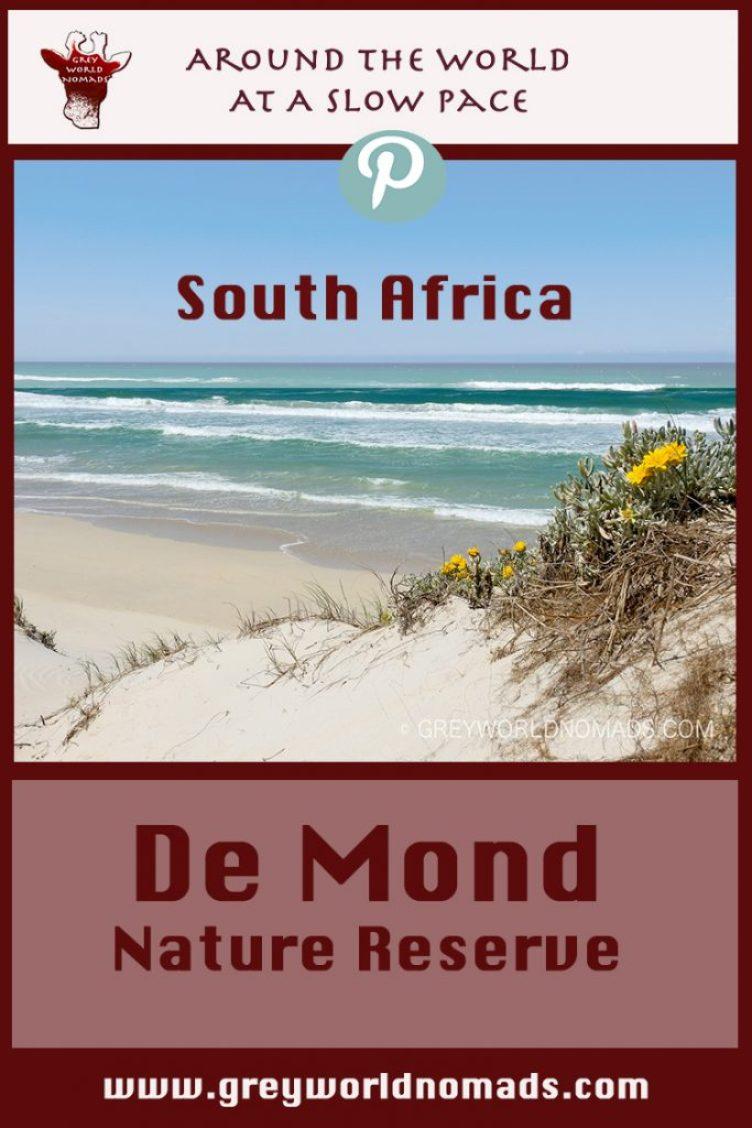 de-mond-southafrica