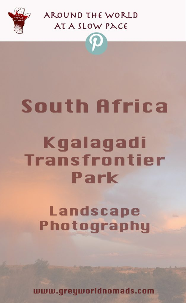 Trapped evening sunlight. Landscape photography, Kgalagadi, South Africa.