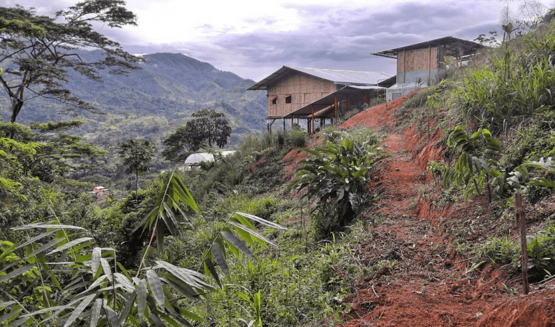 Join a permaculture site located in the Ecuadorian rain forest