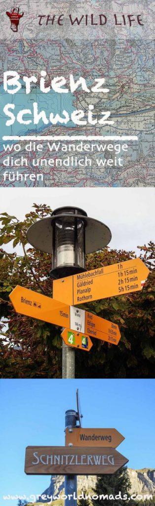 Brienz ist ein bezauberndes Dorf am Brienzersee in den Schweizer Alpen, bekannt für die Brienz Rothornbahn, Holzschnitzerei und das Freiluftmuseum Ballenberg.