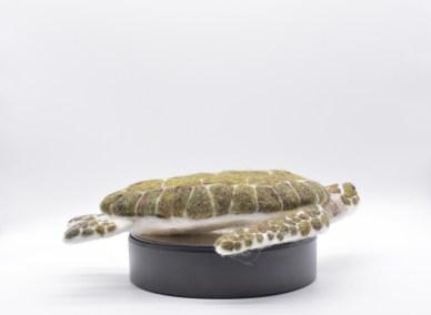 grey-wren-studio-large-kirsties-handmade-seaturtle-4