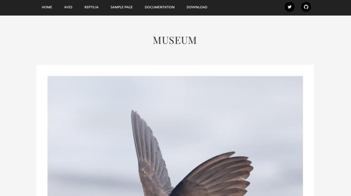 Museum WordPress theme screenshot