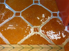 One problem is the salitre that has risen up through my Saltillo tiles throughout the house.