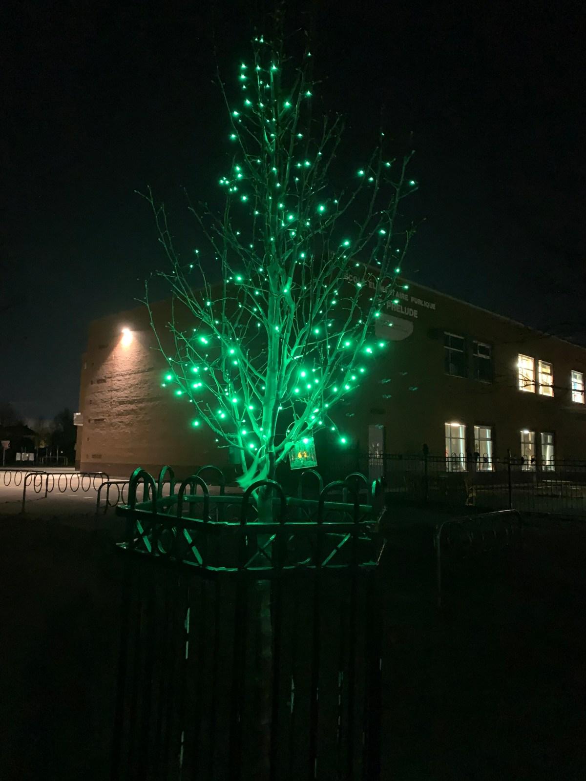 Arbre commémoratif École le Prélude Commorative Tree