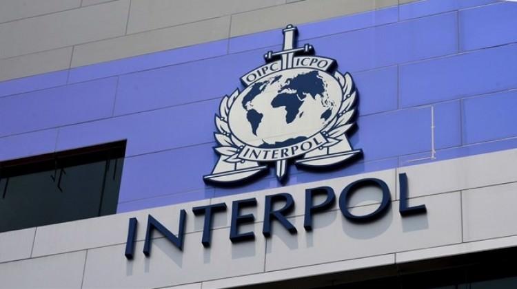 Interpol ile ilgili görsel sonucu