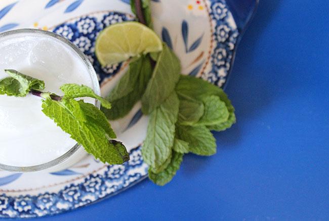 Coconut Mojito | Photo & Recipe by Michelle Lara