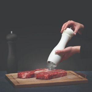 Napoleon soolaveski tarvik gaasigrill grilliguru