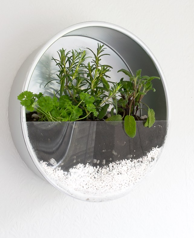 small indoor plants, best indoor plants, wall herb planter
