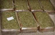 Una mujer traía marihuana de Campeche en un ADO, pero la detienen