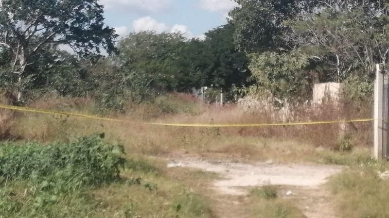 """Cuarto feminicidio del año: Asesinan a una mujer en la colonia """"Emiliano Zapata Sur"""""""